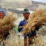 Fair Trade mění svět k lepšímu