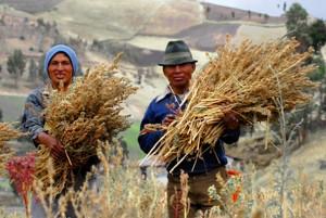 Fair Trade autor: Dider Gentilhomme zdroj: Wikimedia commons