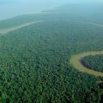 Světově největší chráněná oblast deštného pralesa
