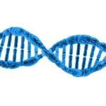 Existuje druhý DNA kód, který řídí geny