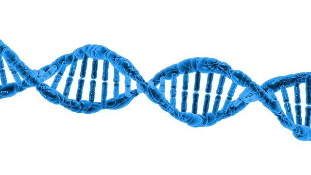 DNA autor: PublicDomainPictures zdroj: Pixabay.com