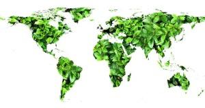 Zelený svět autor: Geralt zdroj: Pixabay.com