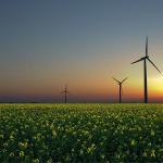 Obnovitelné zdroje zaměstnávají 10krát více osob, než fosilní paliva