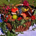 Zbavte ovoce a zeleninu pesticidů