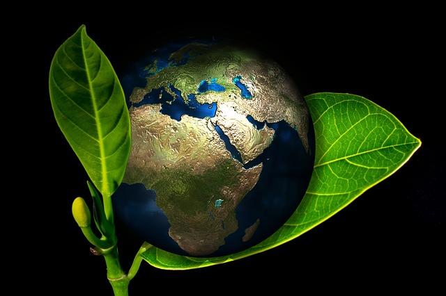 Země ekologie autor: Geralt zdroj: Pixabay.com