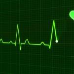 Studie ukazují, co se stane se srdcem po přechodu na veganskou stravu