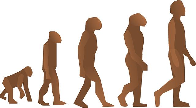 Evoluce zdroj: Pixabay.com