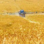 Kalifornie zakázala používání pesticidů v blízkosti škol
