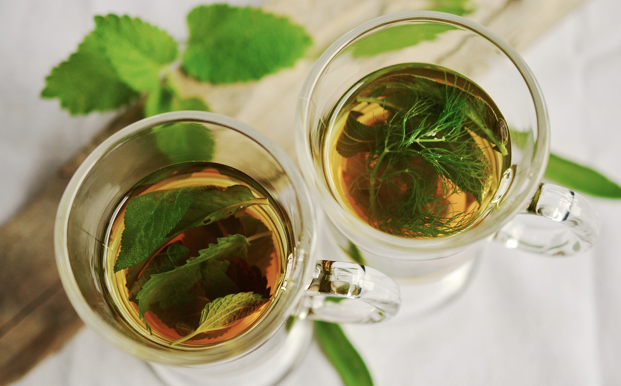 Léčivé bylinky na zimu si letos nasbírejte sami!